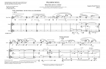 Pilgrim Soul, for 2 violins and bass flute