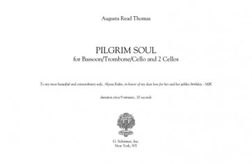 Pilgrim Soul, for solo bassoon and 2 cellos